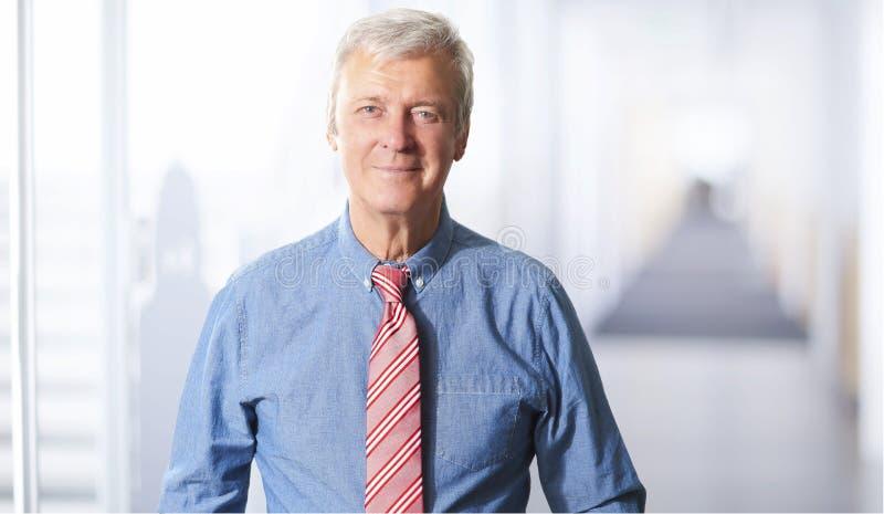 Retrato ejecutivo del hombre de negocios imágenes de archivo libres de regalías