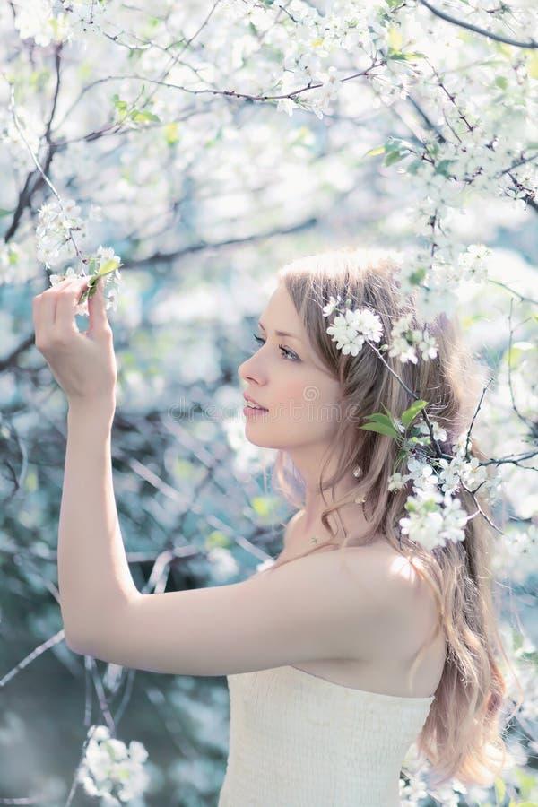 Retrato ensolarado da mola das pétalas tocantes de uma mulher bonita foto de stock royalty free