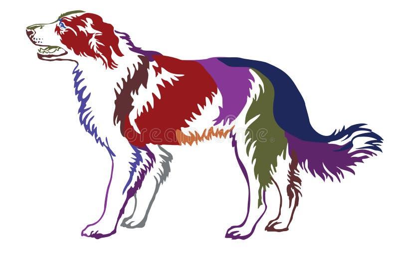 Retrato ereto decorativo colorido do cão border collie ilustração stock