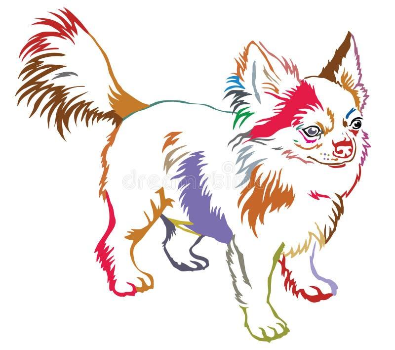 Retrato ereto decorativo colorido do cão Chihuah de cabelos compridos ilustração do vetor