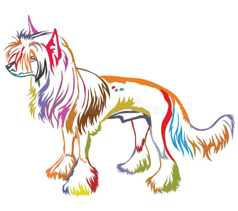 Retrato ereto decorativo colorido do cão com crista chinês ilustração royalty free