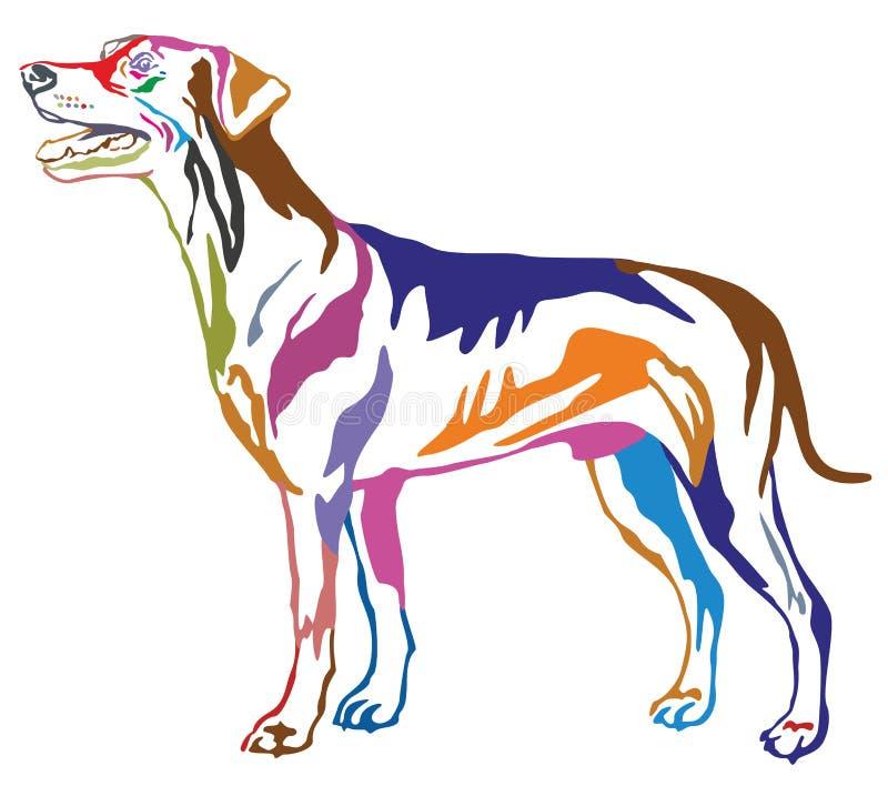 Retrato ereto decorativo colorido do st alemão do Pinscher do cão ilustração royalty free