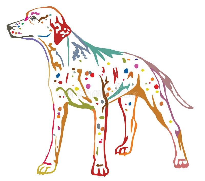 Retrato ereto decorativo colorido do vetor Dalmatian IL do cão ilustração royalty free