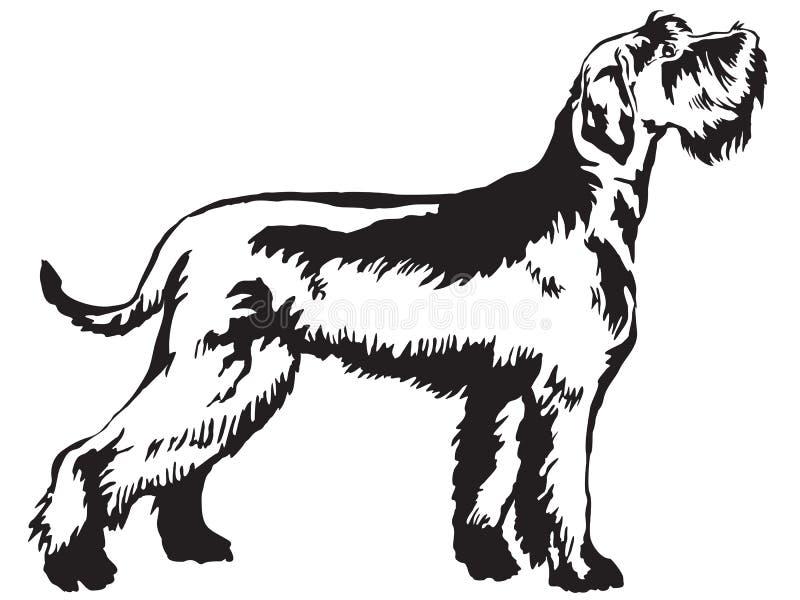 Retrato ereto decorativo do illustrat do vetor do Schnauzer gigante ilustração royalty free