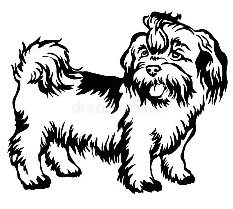 Retrato ereto decorativo do shih-tzu do cão, vetor ilustração do vetor