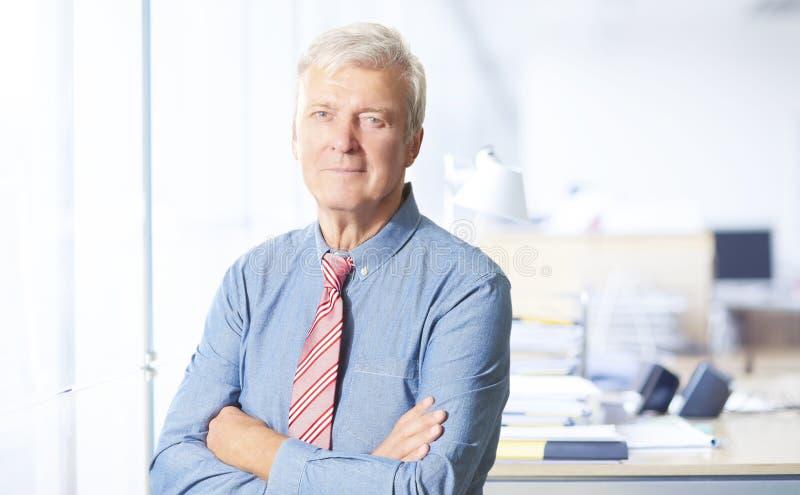 Retrato executivo do alto diretivo foto de stock