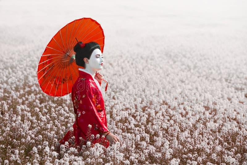 Retrato fêmea do estilo asiático, cor da arte imagem de stock royalty free