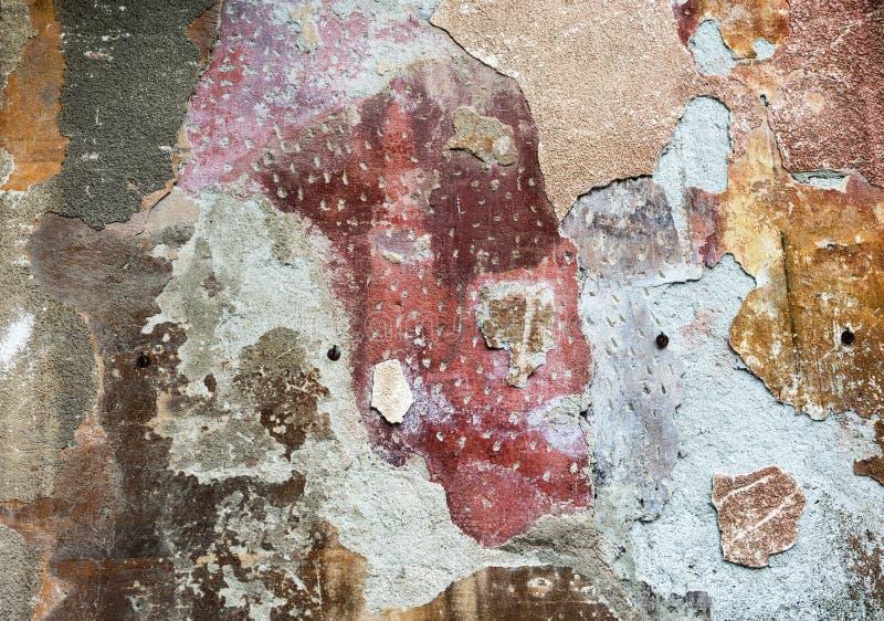 Retrato femenino en una pared foto de archivo