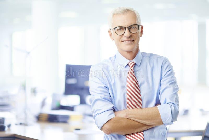 Retrato financiero mayor del director imagen de archivo
