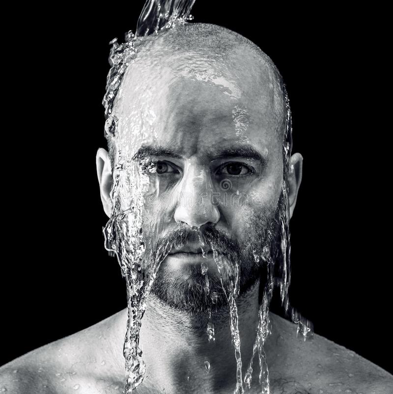 Retrato fino molhado fotografia de stock