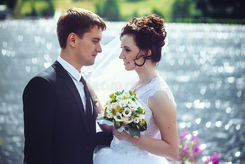 Retrato hermoso de la novia y del novio felices en el fondo de la naturaleza Primer de los recienes casados imagen de archivo