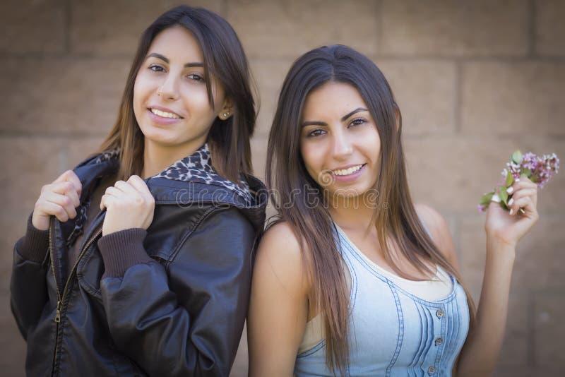 Retrato hermoso de las hermanas del gemelo de la raza mixta imágenes de archivo libres de regalías