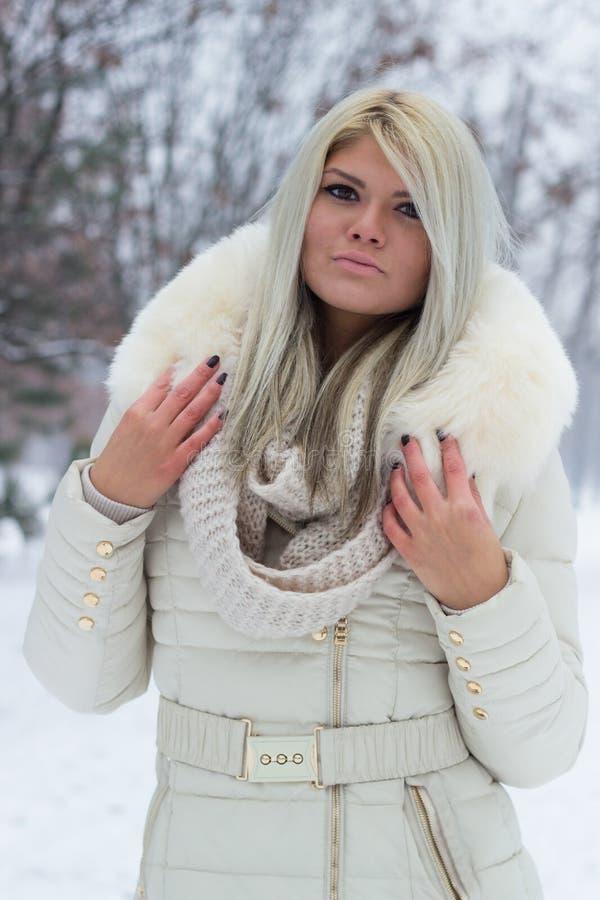Retrato hermoso del invierno de la mujer joven foto de archivo libre de regalías