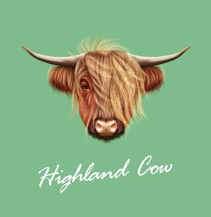 Retrato ilustrado vector del ganado de la montaña libre illustration