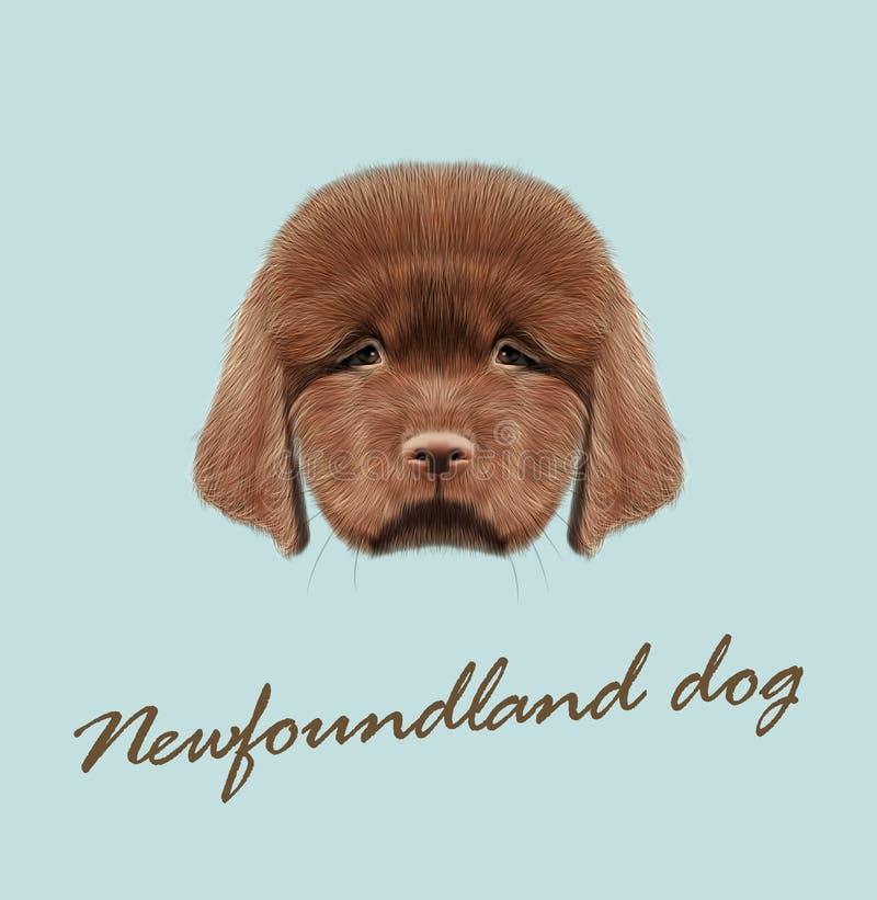 Retrato ilustrado vector del perrito de Terranova imagenes de archivo