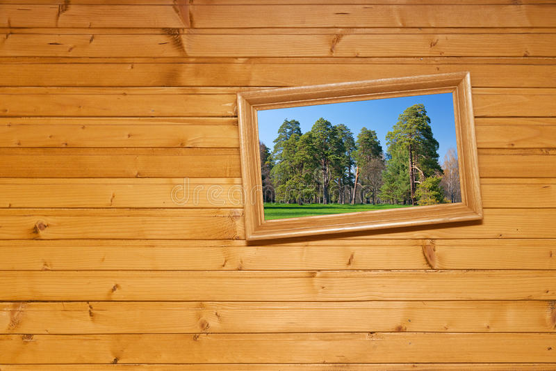 Retrato Inclined na parede de madeira foto de stock royalty free