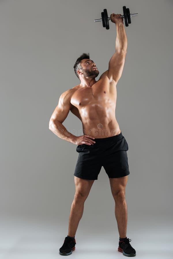 Retrato integral de un culturista masculino descamisado fuerte sano fotos de archivo