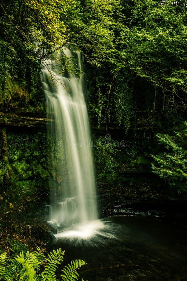 Retrato irlandés de la cascada foto de archivo