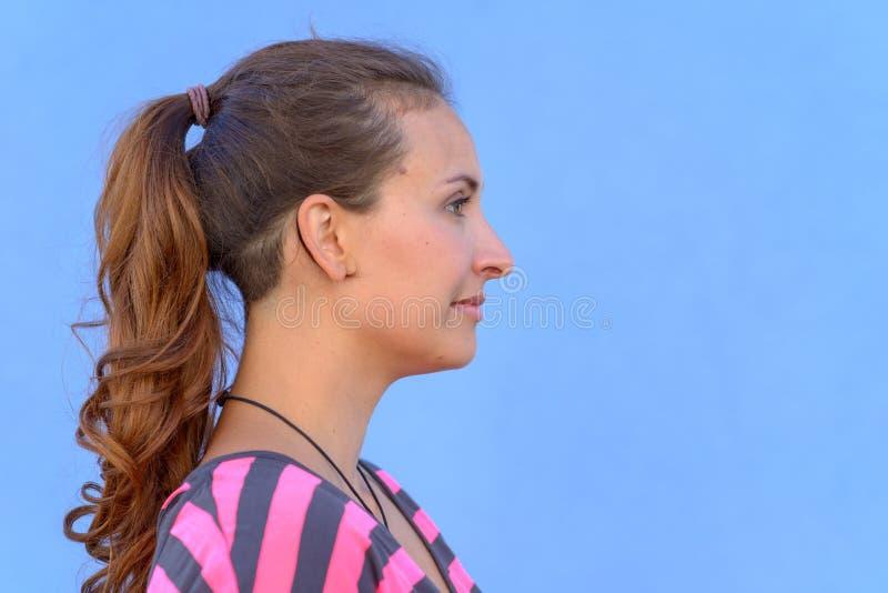 Retrato lateral da mulher moreno consideravelmente nova fotos de stock royalty free
