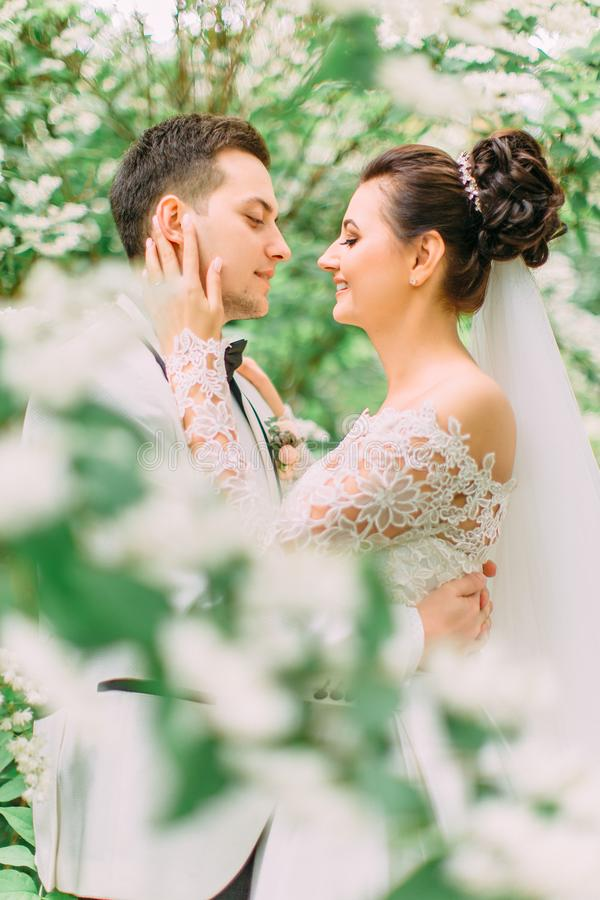 Retrato lateral del primer de la novia que frota ligeramente la cara del novio sonriente imagen de archivo