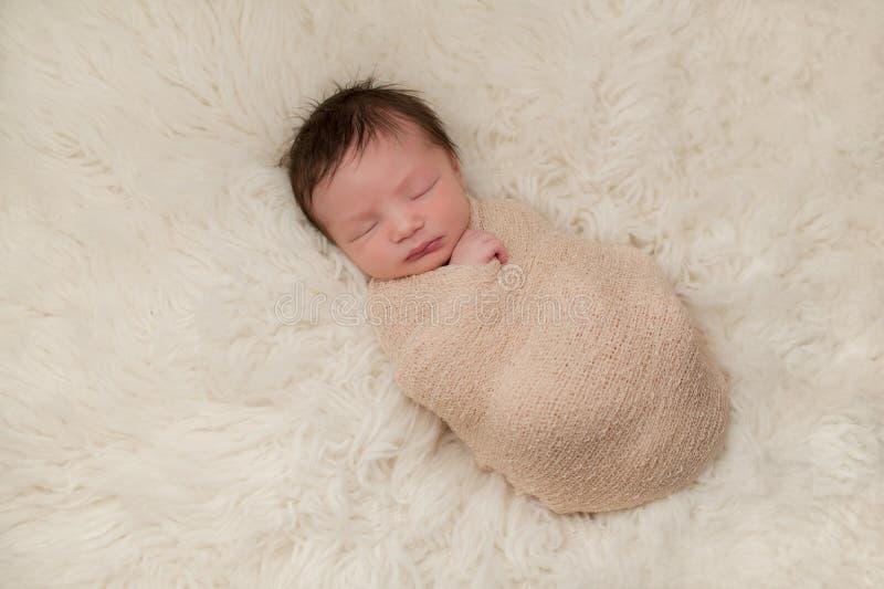 Retrato liado de un bebé recién nacido fotos de archivo libres de regalías