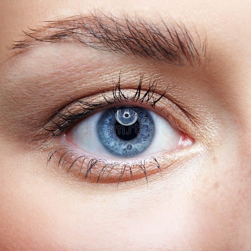 Retrato macro del primer de la cara femenina Ojo azul de la mujer humana con fotos de archivo libres de regalías