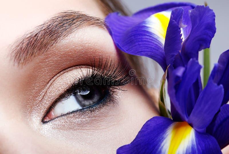 Retrato macro do close up da cara fêmea da beleza nova e ramalhete de flores do irist perto da cara imagem de stock royalty free