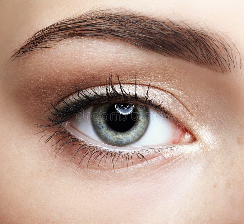 Retrato macro do close up da cara fêmea Olho humano da menina com dia b imagem de stock