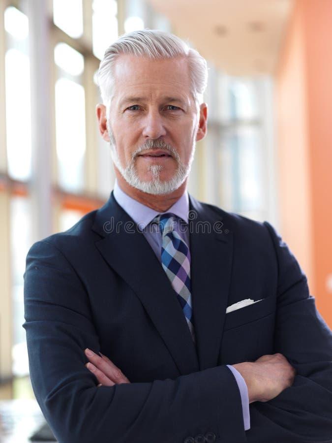 Retrato mayor del hombre de negocios foto de archivo