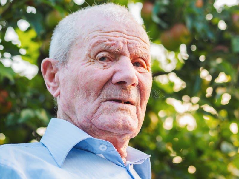 Retrato mesmo do ancião O avô está olhando à câmera Retrato: envelhecido, idoso, superior Close-up do assento do ancião imagens de stock