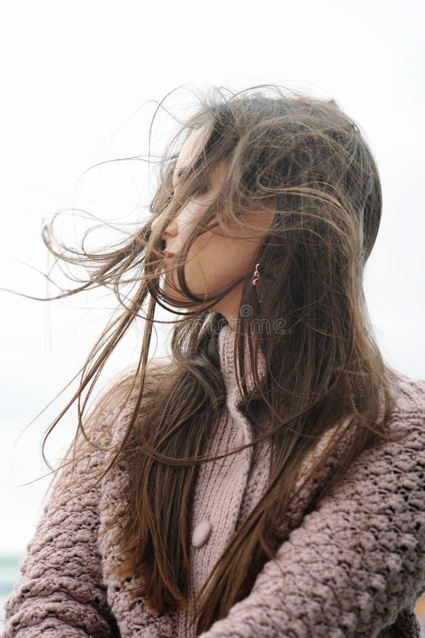 Retrato moreno de sorriso bonito do perfil da mulher, cabelo longo chique que vibra no vento imagem de stock