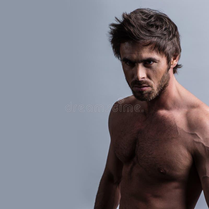 Retrato muscular del hombre fotos de archivo libres de regalías
