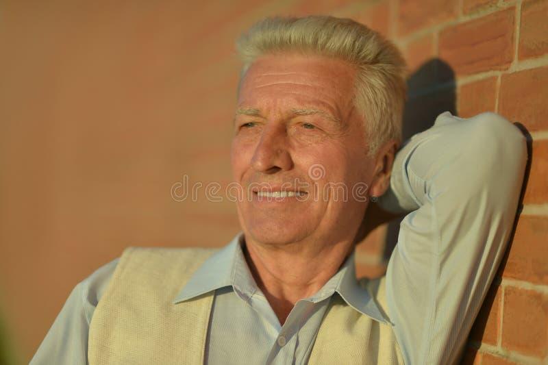 Retrato pensativo del hombre mayor imagen de archivo libre de regalías