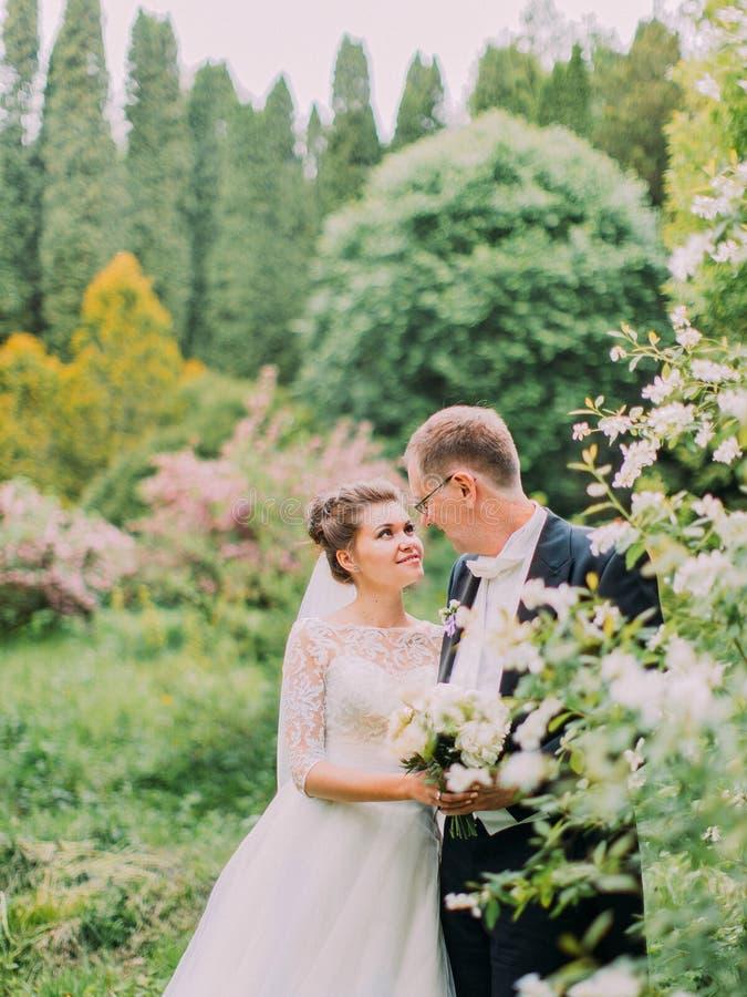 Retrato sensible de los recienes casados sonrientes que pasan tiempo en el jardín floreciente imagenes de archivo
