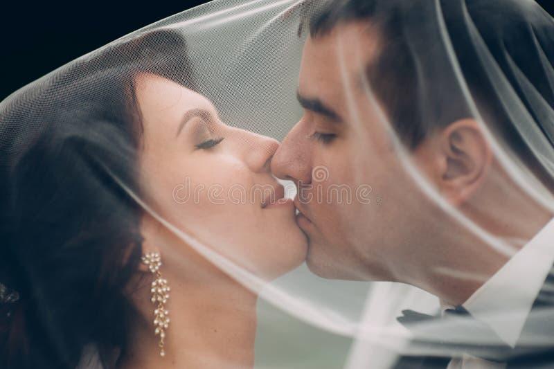Retrato sensual de los pares, novia romántica del recién casado y huggi del novio imagenes de archivo