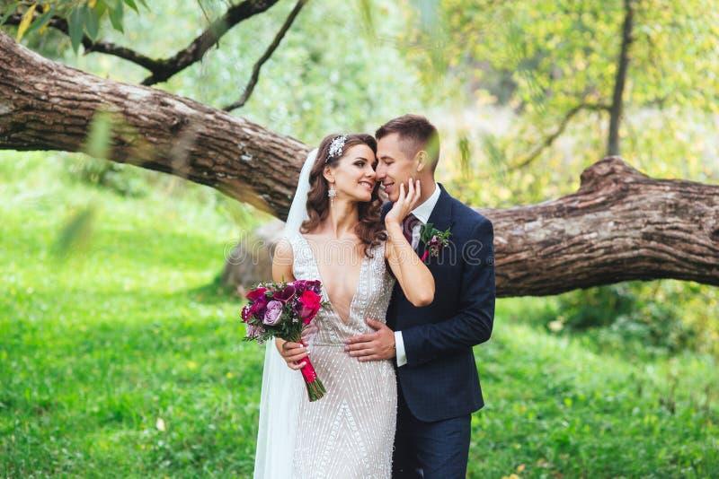 Retrato sensual de um par novo do casamento no parque imagens de stock