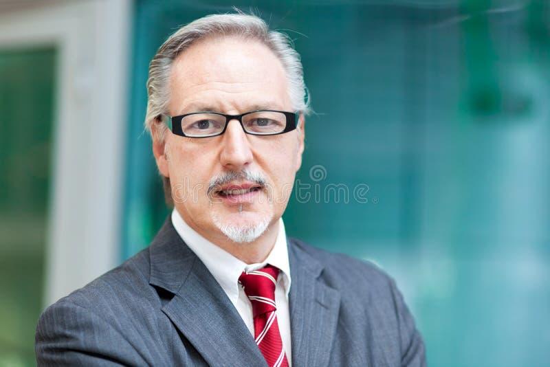 Retrato sonriente del hombre de negocios maduros imagen de archivo