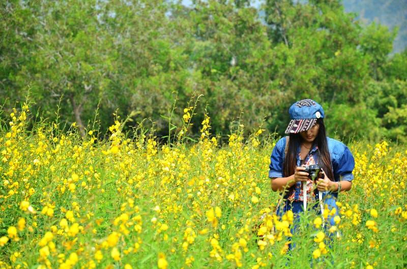Retrato tailandés de las mujeres en campo del juncea del Crotalaria en el campo Nakornratchasrima foto de archivo libre de regalías