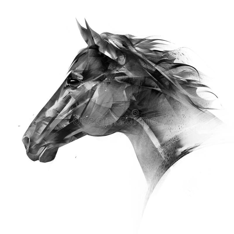 Retrato tirado isolado de um lado da cabe?a de cavalo ilustração stock
