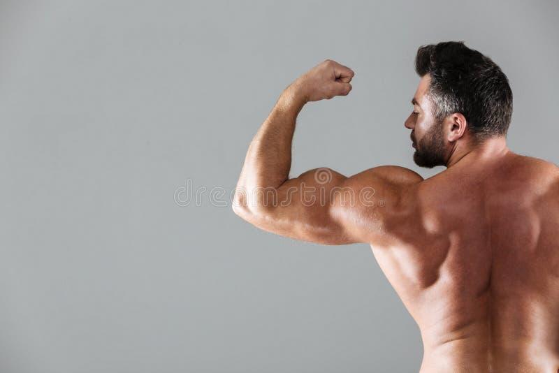 Retrato trasero de la visión de un culturista masculino descamisado muscular fotografía de archivo libre de regalías