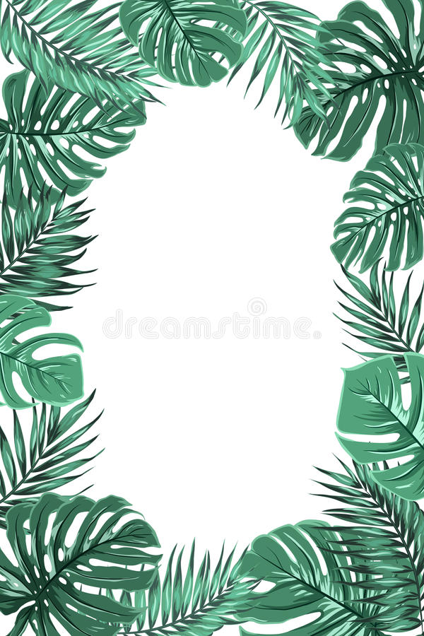Retrato tropical do quadro da folha do monstera da palma da selva ilustração do vetor