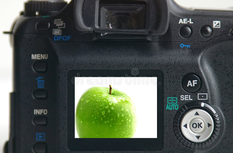 Retrato verde da maçã imagem de stock
