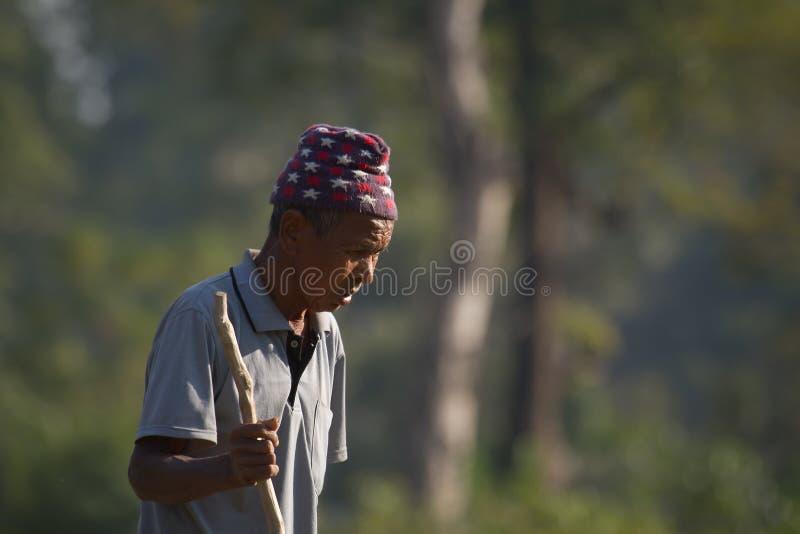 Retrato viejo del hombre del taru en Nepal fotografía de archivo libre de regalías