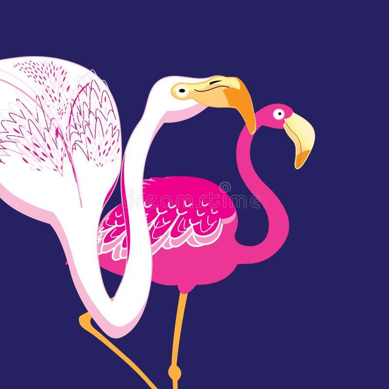 Retratos bonitos dos gráficos de flamingos cor-de-rosa ilustração stock