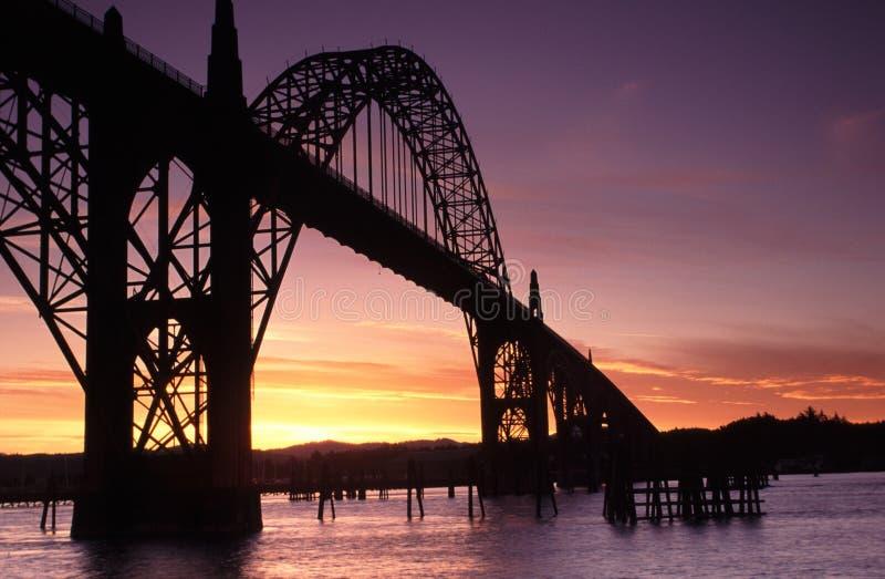 Retratos da costa de Oregon fotos de stock royalty free