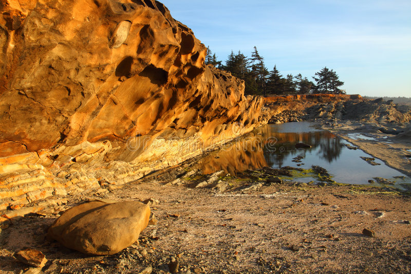 Retratos de la costa de Oregon fotografía de archivo libre de regalías