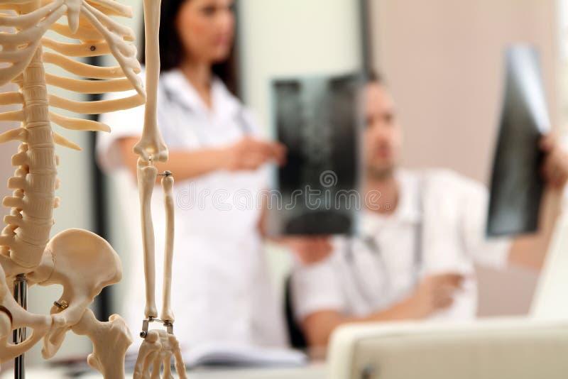 Retratos do raio X imagens de stock royalty free