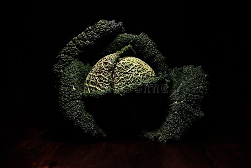Retratos dos vegetais - objeto verde da arte fotografia de stock royalty free