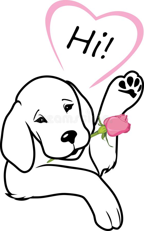 Retriever gives a rose and says hi stock image