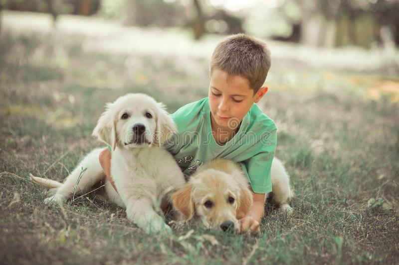 Retriever pup Lovely scene handsom teen boy enjoying summer time vacation with best friend dog ivory white labrador puppy.Happy ai. Rily careless childhood life stock photos